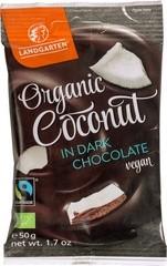 coconut in dark chocolate