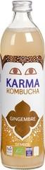 Kombucha gember (6)